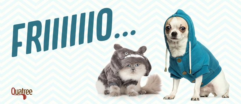 """1b33b54fb ... muitos donos de pets têm algumas dúvidas: """"Será que ele vai passar  frio? O que devo fazer?"""". Apesar dos pelos, os cachorros e gatos podem sim  sentir ..."""