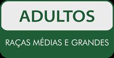 Quatree Life Adultos Raças Médias e Grandes